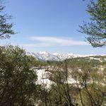 山形 月山のふもとで新緑の広がる雪原を観光してきた!
