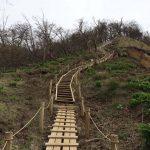 富士山とツツジの絶景!神ノ川から西丹沢 檜洞丸を歩く!