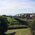 子供もワンコも!海老名 相模三川公園は家族で1日遊べるよ!