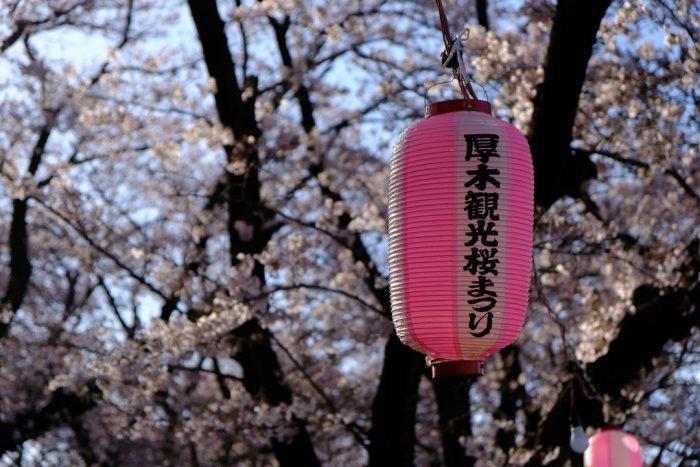 厚木桜まつりの提灯