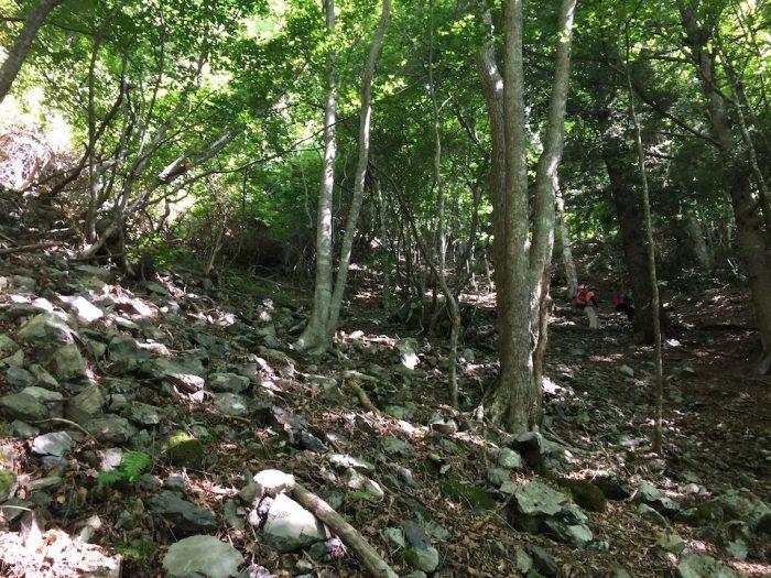 つづら折りの登山道