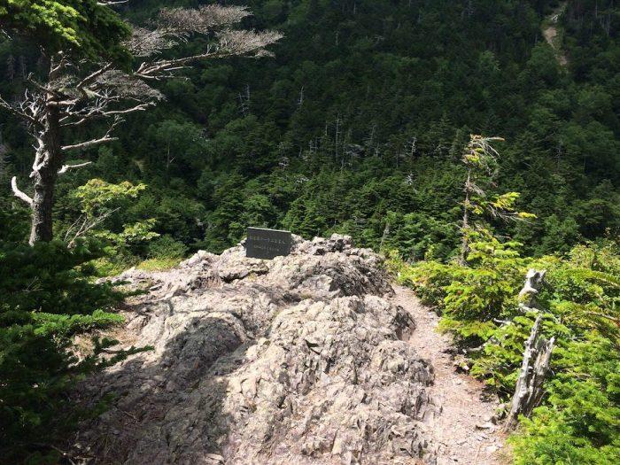 崖から沢を覗く