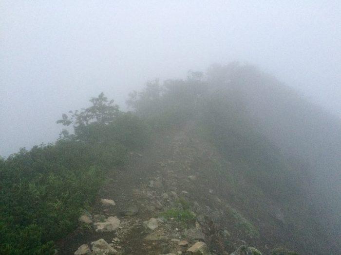 ガスまみれの登山道