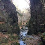 大迫力の峡谷と日光を望む眺望!さわらびの湯から棒ノ折山に登る!