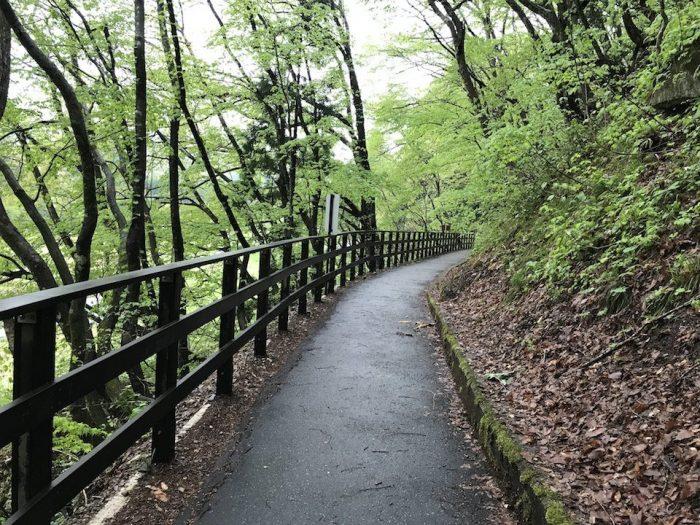 新緑に囲まれた抱返渓谷の入り口