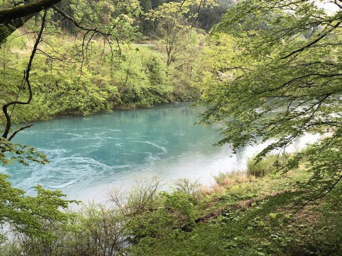 玉川の透き通るような水