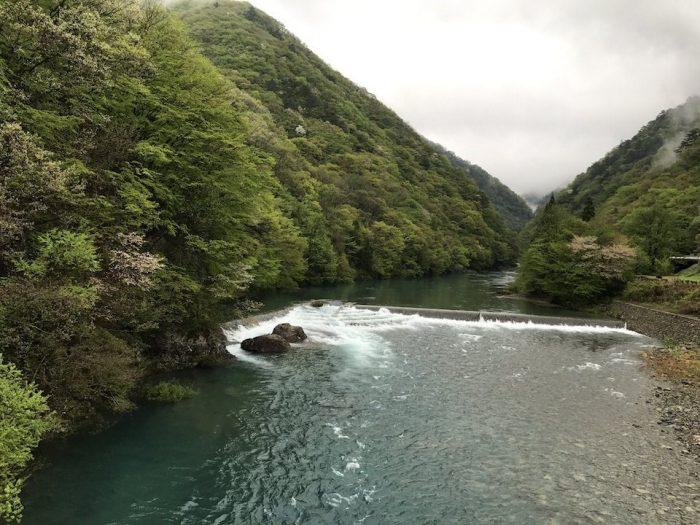 橋から峡谷を眺める