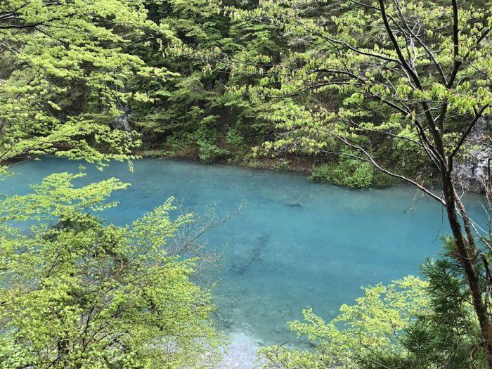 玉川の透き通る水