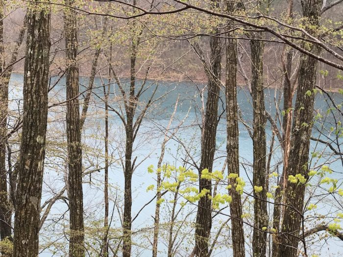 宝仙湖の透き通る水