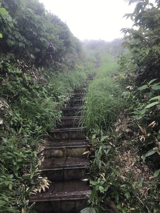 木道の階段