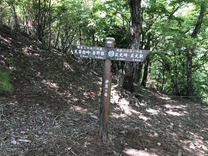 伊豆ヶ岳山頂から天目指峠へ