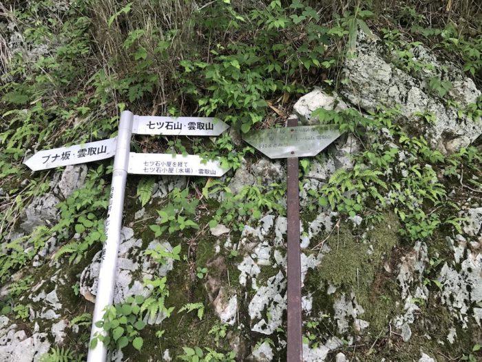 七ッ石山と雲取山の分岐