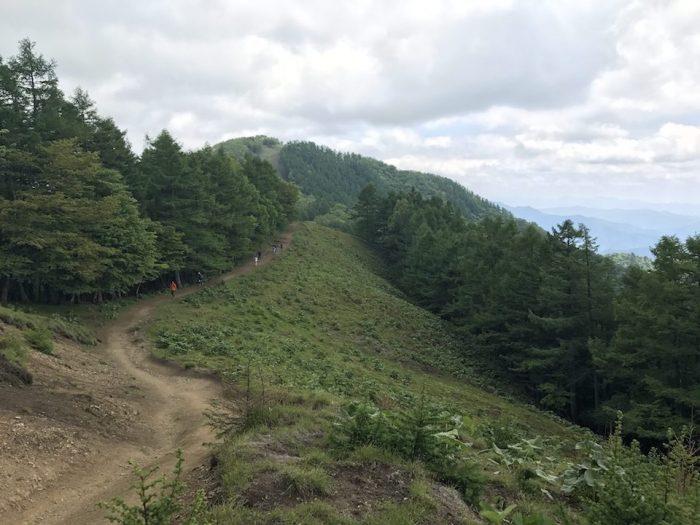 雲取山の尾根道
