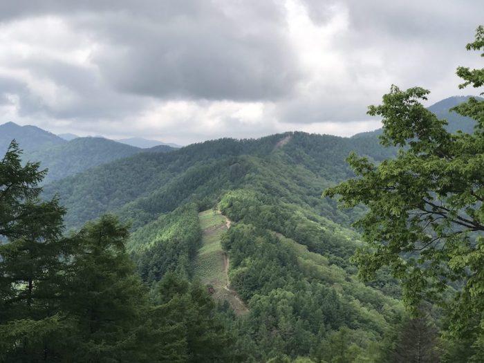 七ッ石山から雲取山を望む