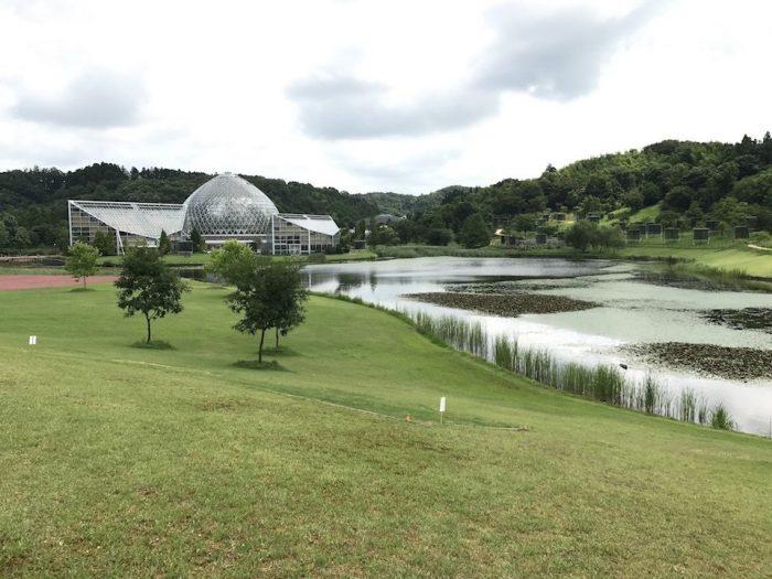 新潟県立植物園の池と温室