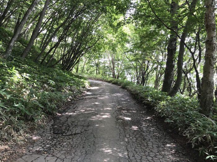 舗装された男体山の登山道