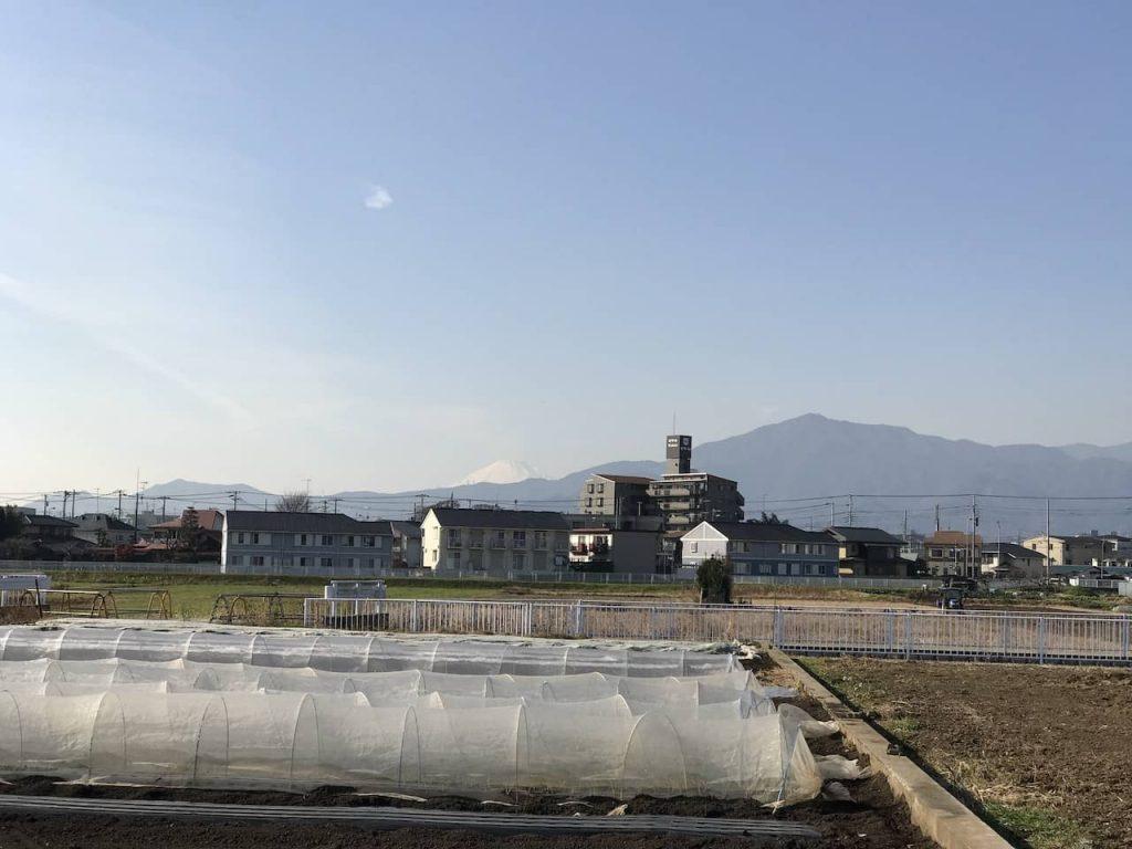 海老名グリーンセンターから見える富士山